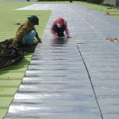 Thi công chống dột mái tôn quận 10